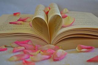 book-1169437__340.jpg