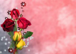flower-143485_640.jpg