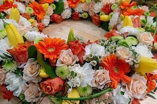 flower-3304040__340.jpg