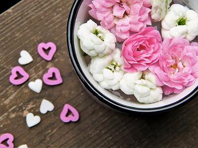 flowers-2537993__340.jpg