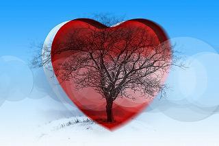 heart-1137269__340.jpg