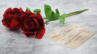red-roses-2442147__340.jpg