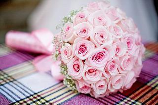 rose-3296348__340.jpg