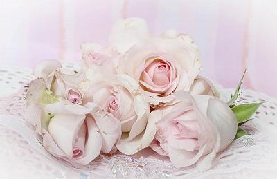roses-2264615__340.jpg